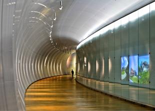 n05-1-tunnel-310x222